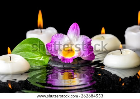spa background of purple orchid dendrobium, green leaf with dew and candles on black zen stone in ripple reflection water - stock photo