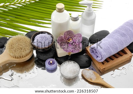 Spa Background-palm and spa set  - stock photo