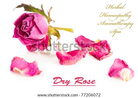 Spa background. Pink roses and herbs on white - stock photo