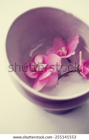 Spa background with flowers and water in vintage colors - stock photo