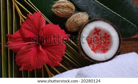 spa beauty exotic tropical flowers coconuts white towels - stock photo