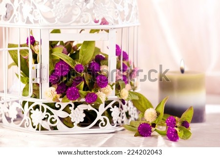 Spa candle in front of white bird cage filled with flowers. - stock photo