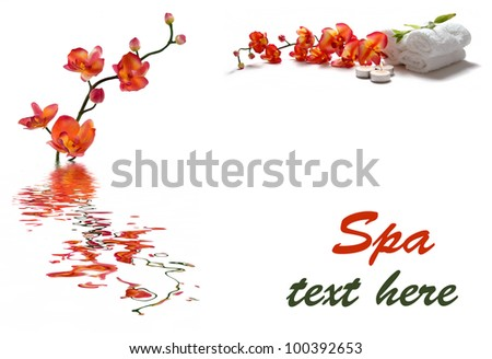 Spa collage with orchids - stock photo