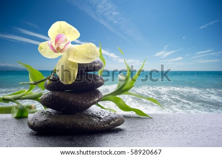 spa concept black stone with orchid on landscape background - stock photo
