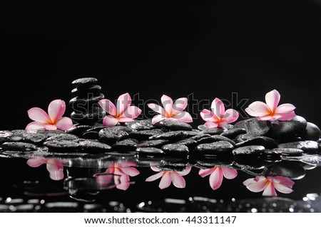 spa concept-frangipani and wet stones - stock photo