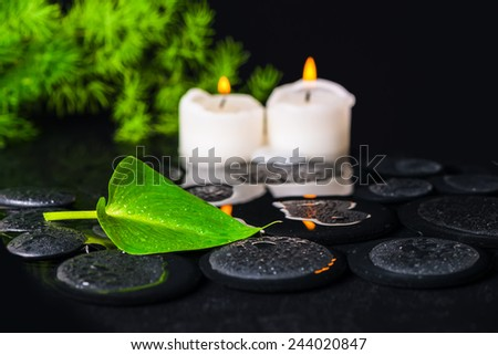 spa concept of green leaf Calla lily, foliage and candles on zen basalt stones with drops in water - stock photo