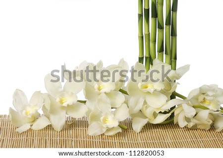 spa concept �set of thin bamboo grove with white bran orchid - stock photo