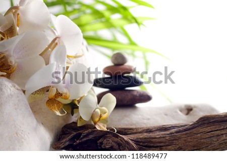 Spa concept with orchid and zen stones on white background - stock photo