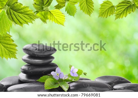 spa concept with zen stones and  flower - stock photo