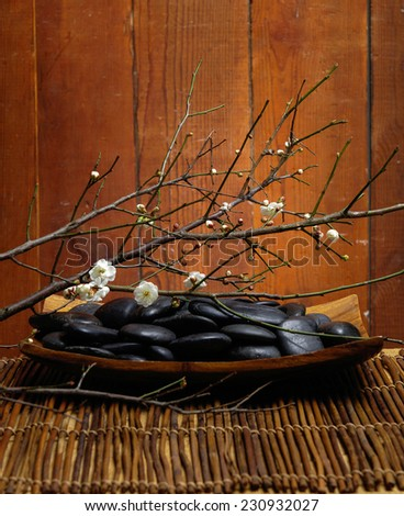 spa concept zen basalt stones in bowl mat with branch of cherry  - stock photo
