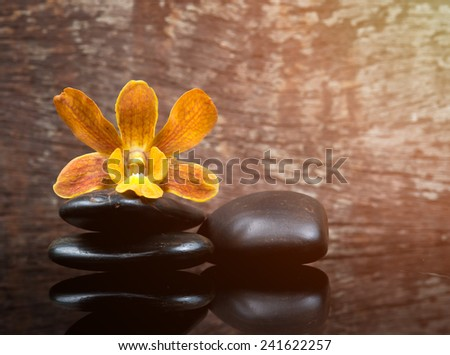 spa concept zen stones and orchid on wood background - stock photo