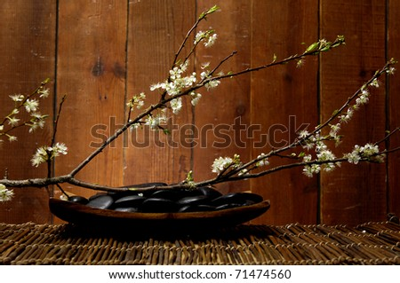 spa concept zen stones in bowl and spring blooming sakura cherry flowers - stock photo