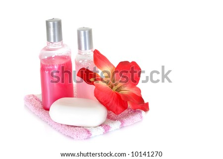 Spa essentials for daily hygiene on white background - stock photo