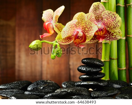 spa frame from bamboo grove, yellow orchid and basalt stones with drops - stock photo