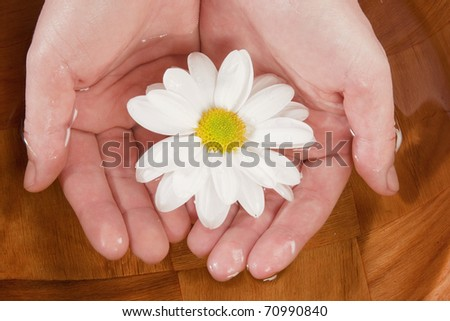 spa manicure - stock photo