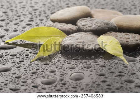 Spa massage stones with leaves and water drops, close up - stock photo