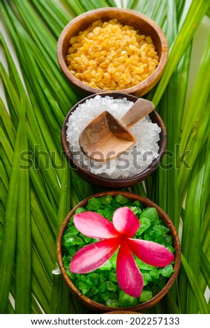 spa relax set on green leaf - stock photo