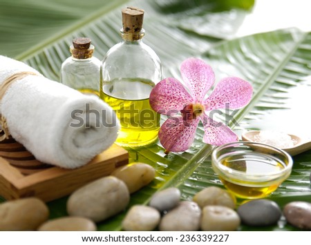 Spa setting and wet green leaf - stock photo