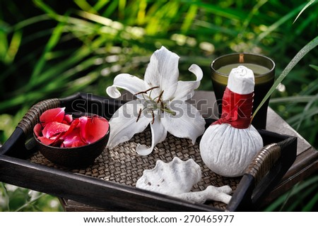 spa still life in summer garden - stock photo