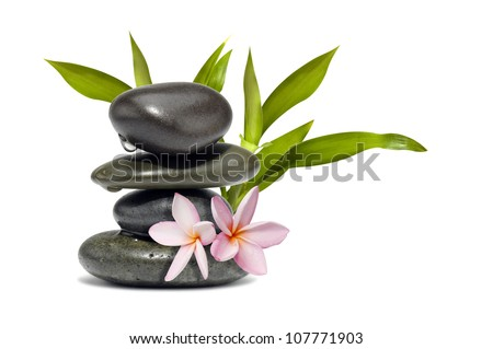 Spa still life with flowers and green leafs - stock photo