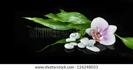 Spa still life with zen stone, orchid flower and bamboo for banner - stock photo