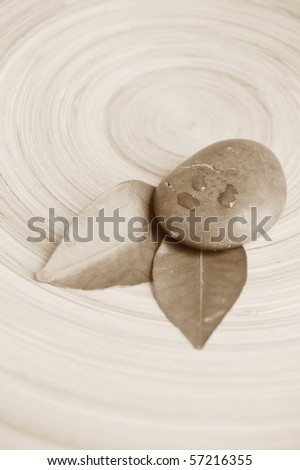 spa stone and leaves monochrome - stock photo