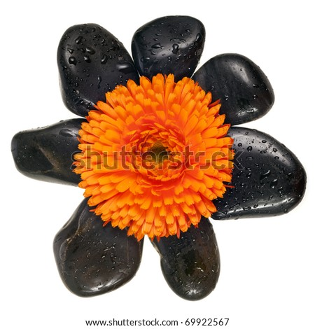 spa stone with flower on white - stock photo