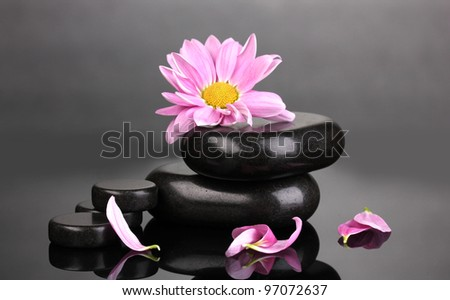 Spa stones and flower on grey background - stock photo