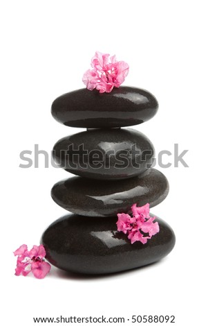 spa stones and pink flowers isolated - stock photo