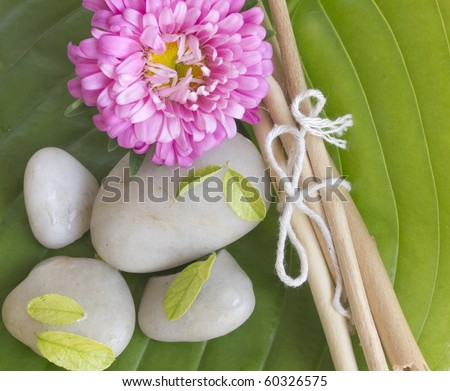 spa stones, branches and flower on the big leaf - stock photo