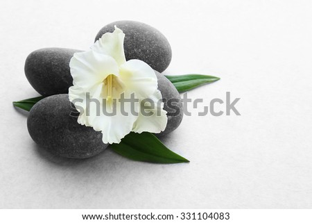 Spa stones with flower on light background - stock photo