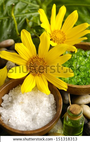 spa supplies with sunflower . salt in bowl on leaf - stock photo