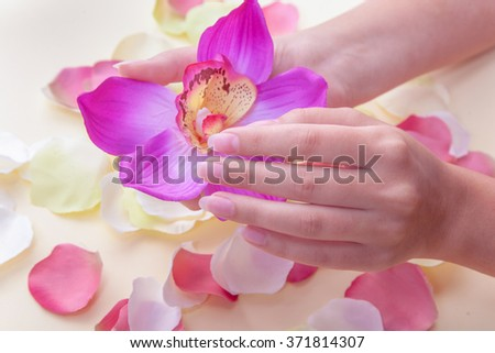 spa treatments for female hands. beautiful female hands with flower Orchid - stock photo
