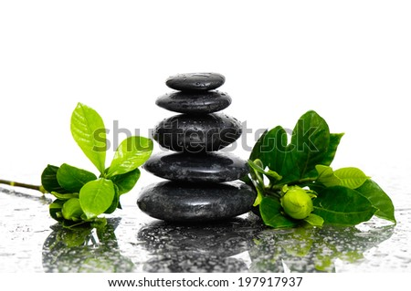 Spa wet Background with gardenia bud with leaves and black stones   - stock photo