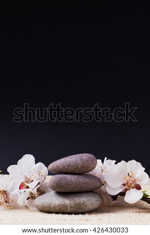 Spa with stone, rock for zen, beauty, balance, wellness, flower branch on black background. Concept of health, therapy, relaxation. Massage treatment for tranquil and harmony - stock photo