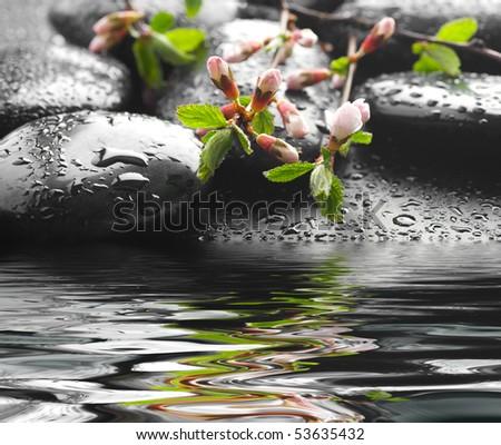 Spa Zen Stones in water - stock photo