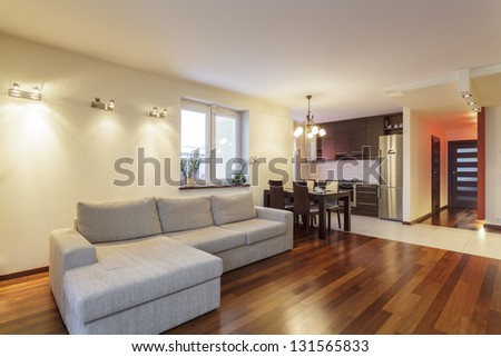 Spacious apartment - Living room and kitchen in modern house - stock photo