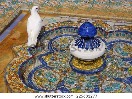 Spain, Andalusia, Seville. White dove on colourful arabesque ceramic tiles of a fountain in the Mudejar Pavilion gardens - Maria Luisa Park.  - stock photo