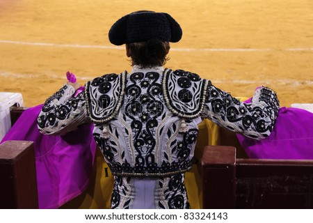 Spanish bullfighter seen from behind - stock photo