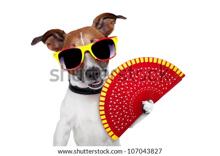 spanish dog with a red hand fan - stock photo
