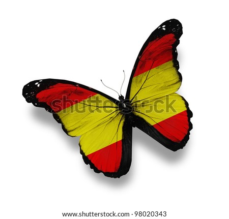 Spanish flag butterfly, isolated on white - stock photo