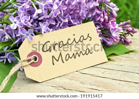 spanish Mother`s Day card with lilac/Thanks mom/spanish - stock photo