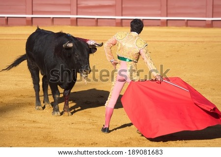Spanish national amusement - corrida, bullfighting in Spain.  - stock photo