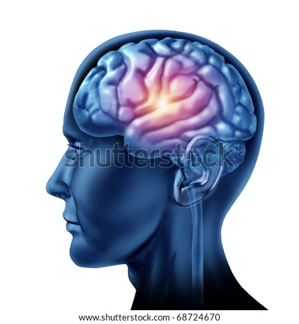 spark of genius brain head lobes cortex intelligence creativity strategy planning isolated - stock photo
