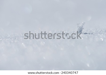 Sparkle of snow - stock photo