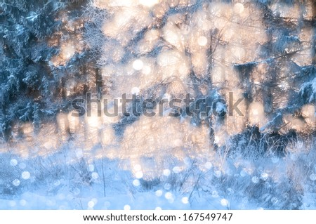Sparkling natural background in gentle pastel tones. Winter forest removed by means of a monocle against the sun. - stock photo