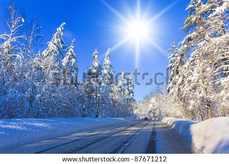 Sparkling Sunny Winter - stock photo