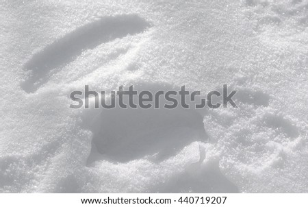 Sparkly White Snow Texture Background - Footprint pattern in fresh white fluffy snow with sparkles on a ground surface, snowy winter texture photo. - stock photo