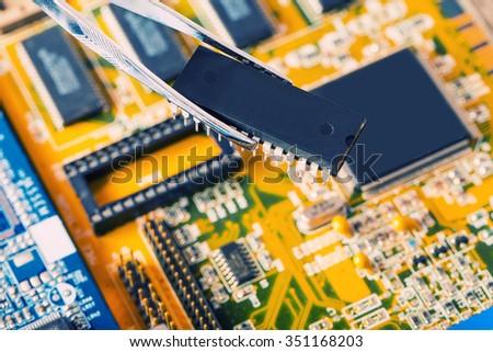 specialist take microchip by forceps - stock photo