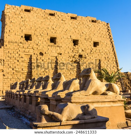 Sphinxes at the entrance of the Karnak Temple - Luxor, Egypt - stock photo